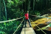 Tijuca Forest suspension bridge